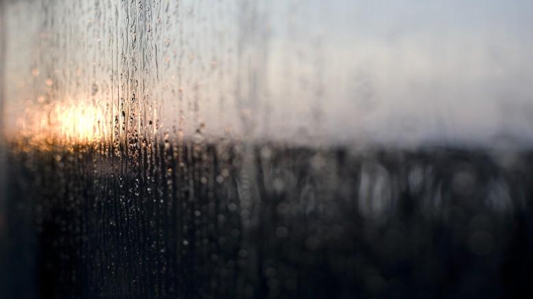 Rain On Window At Dawn